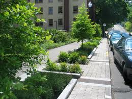 Green infrastructure photo