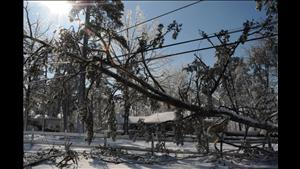 Snow Storm Damage in Arkansas