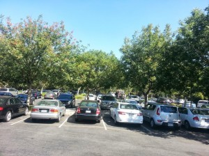 City of Davis parking lot