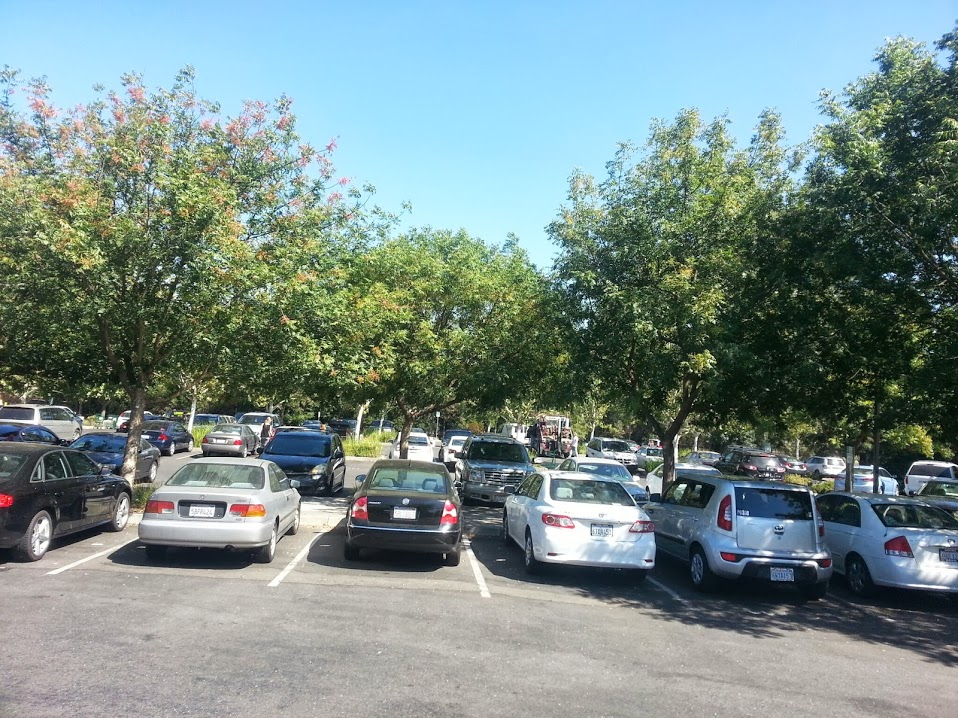 tree davis research tackles challenges to shaded parking