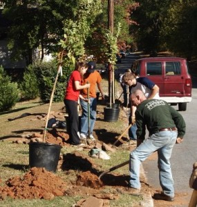 NeighborWoods tree planting