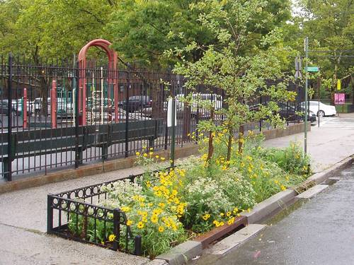 New Guide For Planning City S Green Infrastructure Actrees