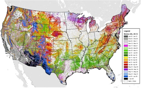 Researchers Map Seasonal Greening in US Forests and Urban Areas